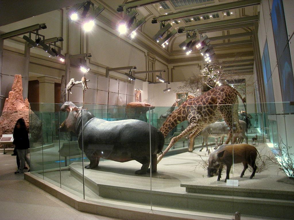 Ett av världens mest besökta museum